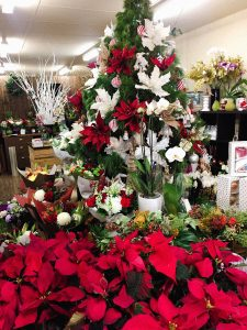 Merry Christmas Floral Expressions